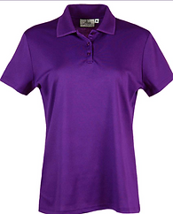234-AQD Ladies Polo.png