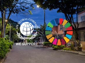 Novalume supports the UN Global Compact and contributes to the UN SDGs