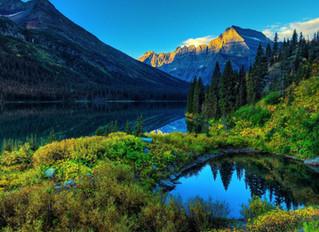 News 17 - Que Lições Podemos Ter Com a Natureza?