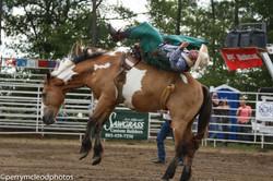 Blythewood Rodeo 2016-64
