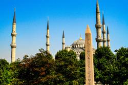 Turkey prints  (7 of 16)