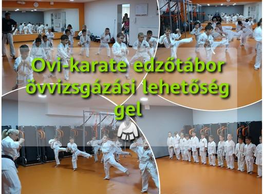 OVI-karate Edzőtábor  Övvizsgázási Lehetőséggel (2020 - Január)