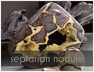 septarian nodule