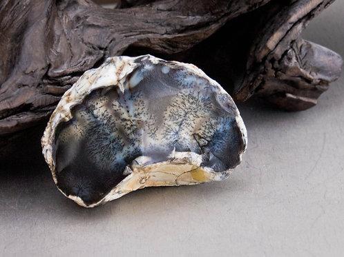 dendrite opal tree agate
