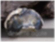 dendrite agate
