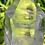 Thumbnail: 1.34lb transparent lemurian seed crystal