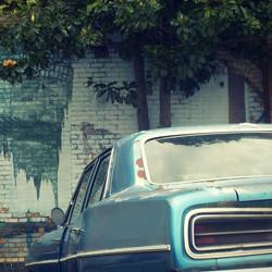 Brick Wall, Car Bumper_edited