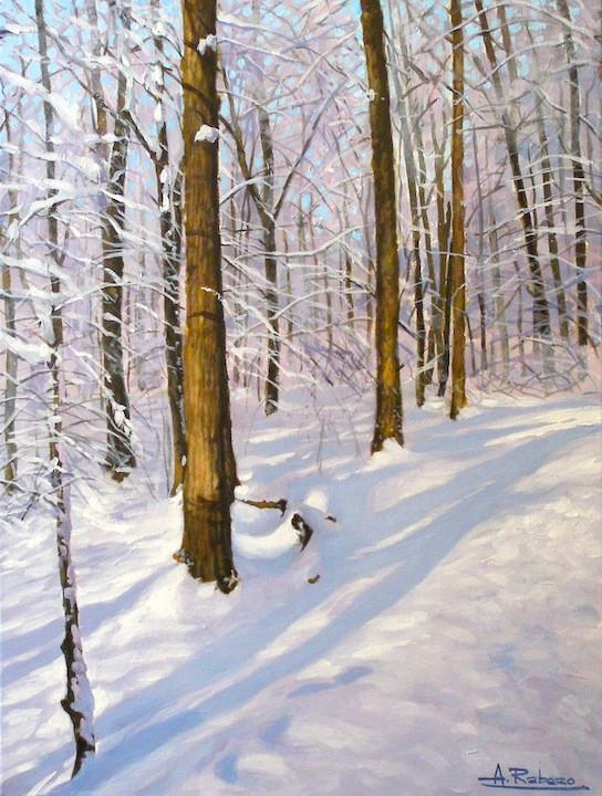 Winter at Earl Bales Park