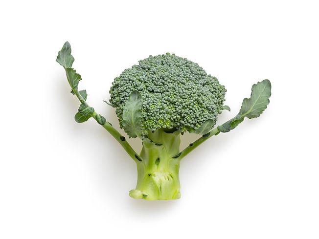 Single broccoli.jpg