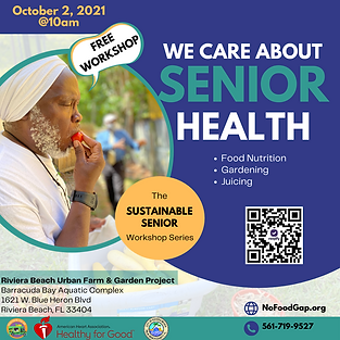 The Sustainable Senior Workshop Series.png