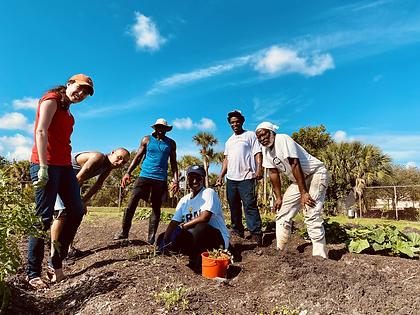 Farm Volunteers.HEIC