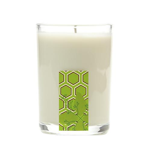 Cinnamon Cypress non-toxic candle