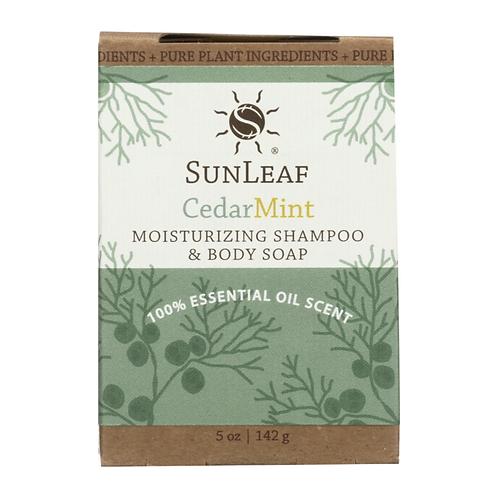 Shampoo and Body bar~Citrus Mint
