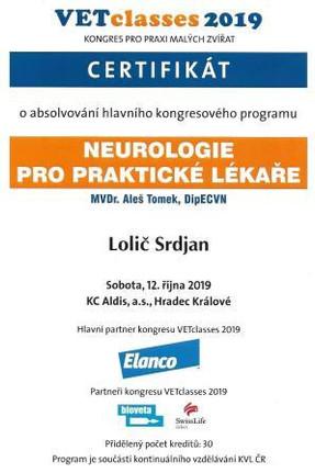 Srdjan Lolic - Certificate 5