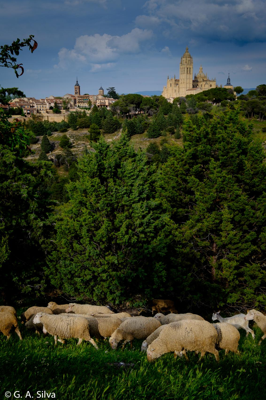 Spain2016_Segovia-9