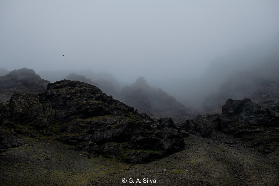 Iceland_Contrasts-3