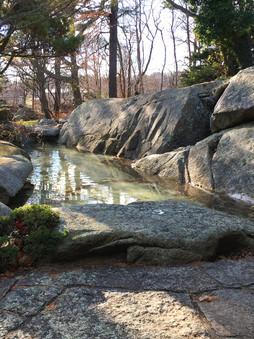 Large Pond Renovation