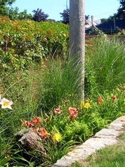 Colorful Perennial Garden Bed