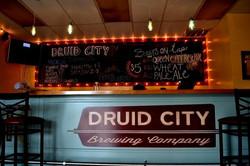 druid city inside.jpg