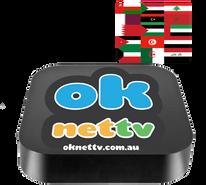 ArabicTV Box + Zaap TV Arabic (1 year subscription) + Youtube + Skype + Facebook