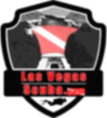 lvs logo.png