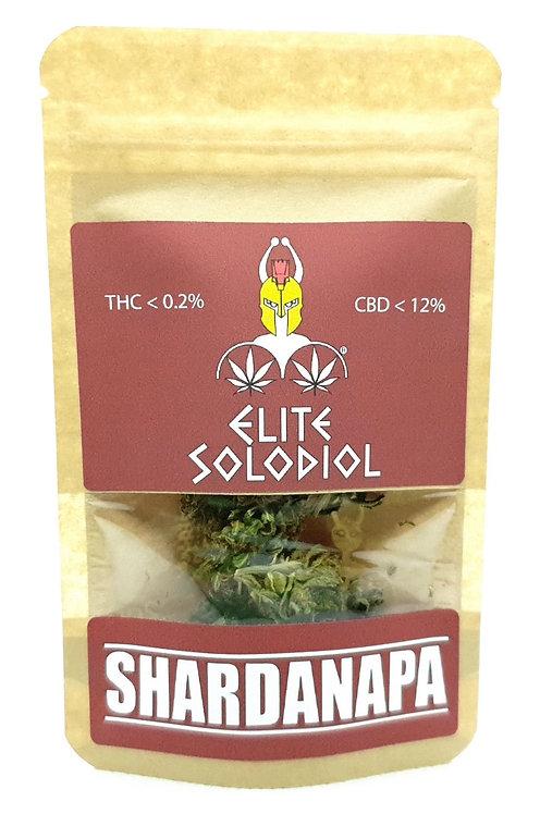 2g Elite Solodiol
