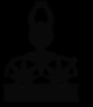 shardanapa logo.png
