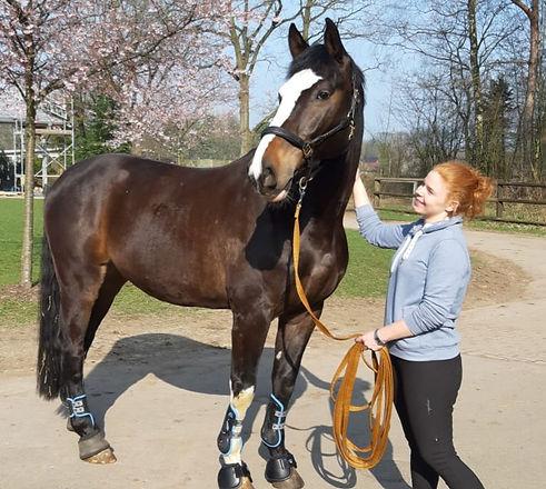 Spezial-Sprechstunde für Reiter und Pferd in Kooperation Physioreiter Kaiser und Tierklinik Lüsche GmbH Joana Kommerowski und Can you feel it