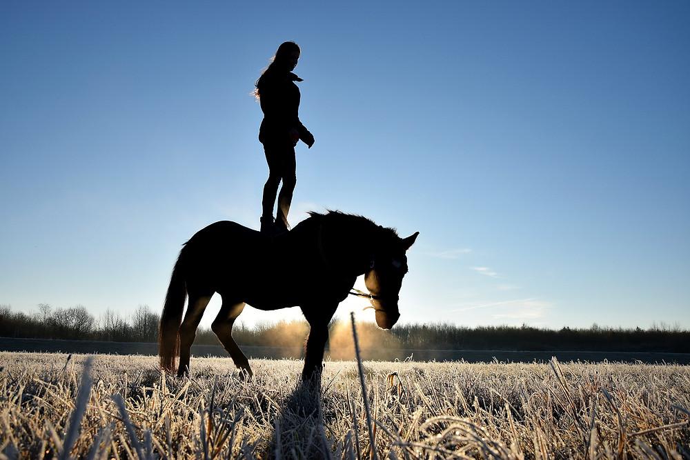 Wie finde ich meine innere Balance um meinem Pferd Sicherheit zu geben, dass wir auf dem Turnier erfolgreich sind? Persöhnlichkeitsentwicklung im Reitsport. Erfolgreiche Turnier-Saison