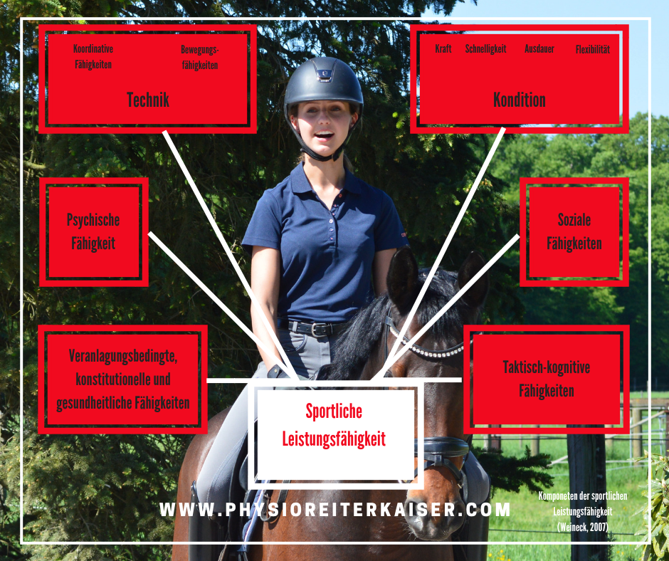Sportmotorischer Test für Reiter - vom deutschen Olympia Komitee für Reiterei