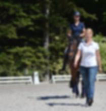 Physiotherapie für Reiter NRW,ohne Schmerzen reiten,Ausgleichssport zum Reiten,Physioreiter Kaiser