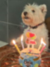 PC Bella birthday_edited.png