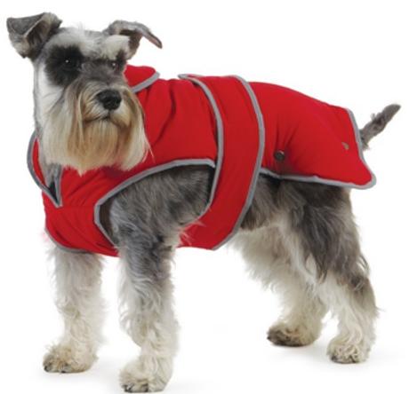 PC dog coat.png