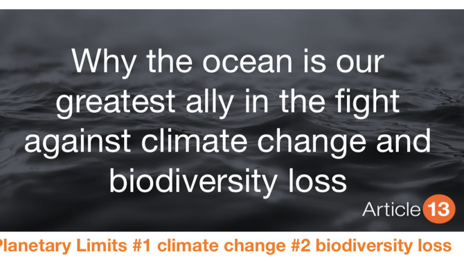 Why the ocean is our greatest ally in the fight against climate change and biodiversity