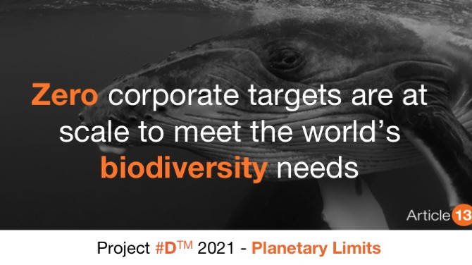 WHY THE OCEAN IS OUR GREATEST ALLY IN THE FIGHT AGAINST CLIMATE CHANGE AND BIODIVERSITY LOSS