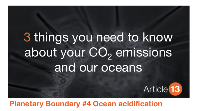 PLANETARY BOUNDARY #4 OCEAN ACIDIFICATION: The other impact of corporate carbon emissions