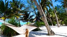 Zanzibar: Pongwe Beach
