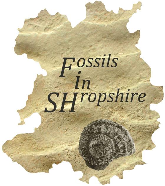 Shropshire's Amazing Journey