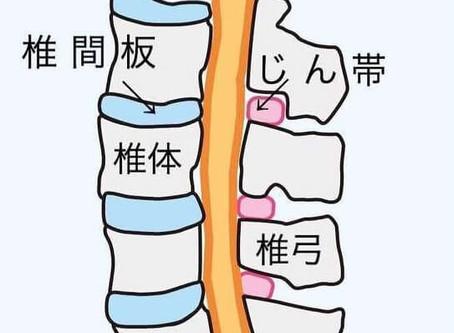 脊柱管狭窄症に必要なストレッチ!