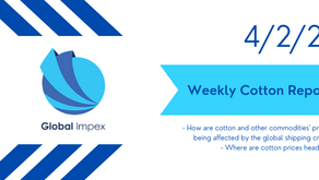 Weekly commodities report: Global Impex USA's cotton price analysis and expectations for 4/2