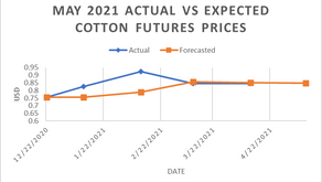 Weekly commodities report: Global Impex USA's cotton price analysis and expectations for 4/22