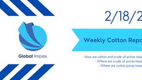 Weekly commodities report: Global Impex USA's cotton price analysis and expectations after 2/18