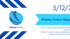 Weekly commodities report: Global Impex USA's cotton price analysis and expectations for 3/12