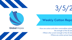 Weekly commodities report: Global Impex USA's cotton price analysis and expectations for 3/5