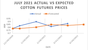 Weekly commodities report: Global Impex USA's cotton price analysis and expectations for 4/29