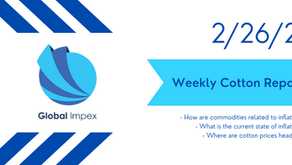 Weekly commodities report: Global Impex USA's cotton price analysis and expectations for 2/26