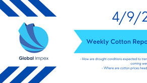 Weekly commodities report: Global Impex USA's cotton price analysis and expectations for 4/9