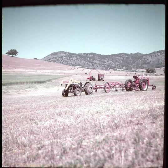 Santa Ysabel Ranch006.jpg