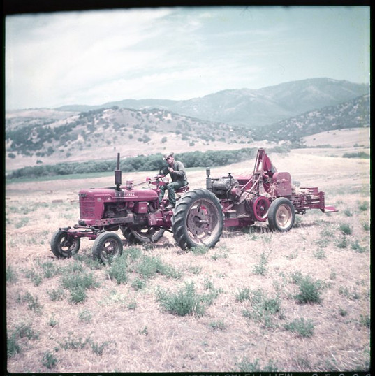 Santa Ysabel Ranch007.jpg