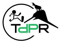 _RaidlLight 2019_logo TDPR.png